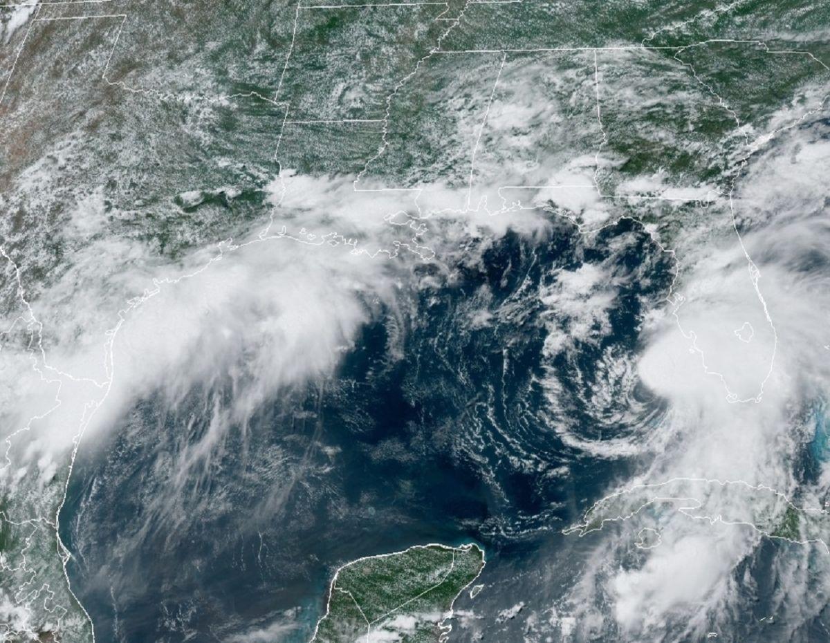 La noche de este martes se espera que la tormenta Elsa toque costas de Florida.