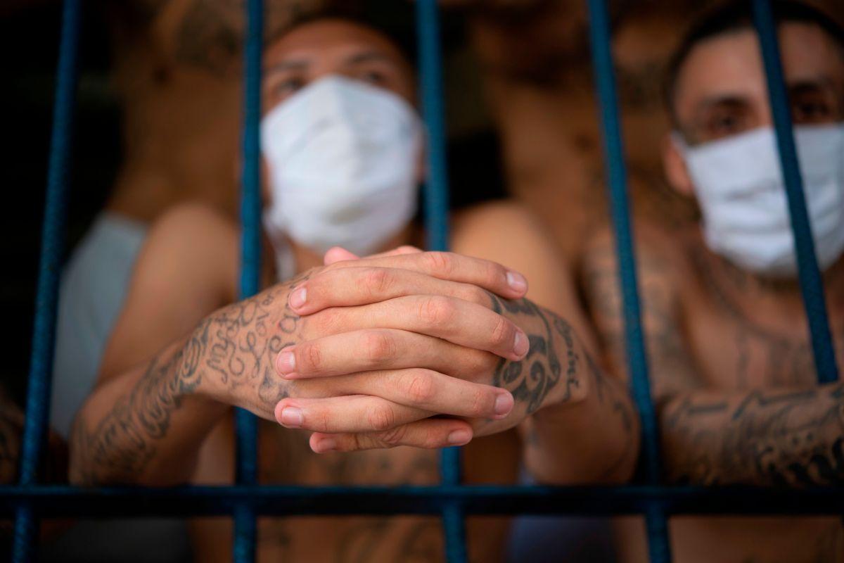 Miembros de la MS-13 detenidos en El Salvador. (Archivo)