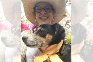 Era actriz mujer que se aventó con su perro de edificio de 46 pisos en Nueva York