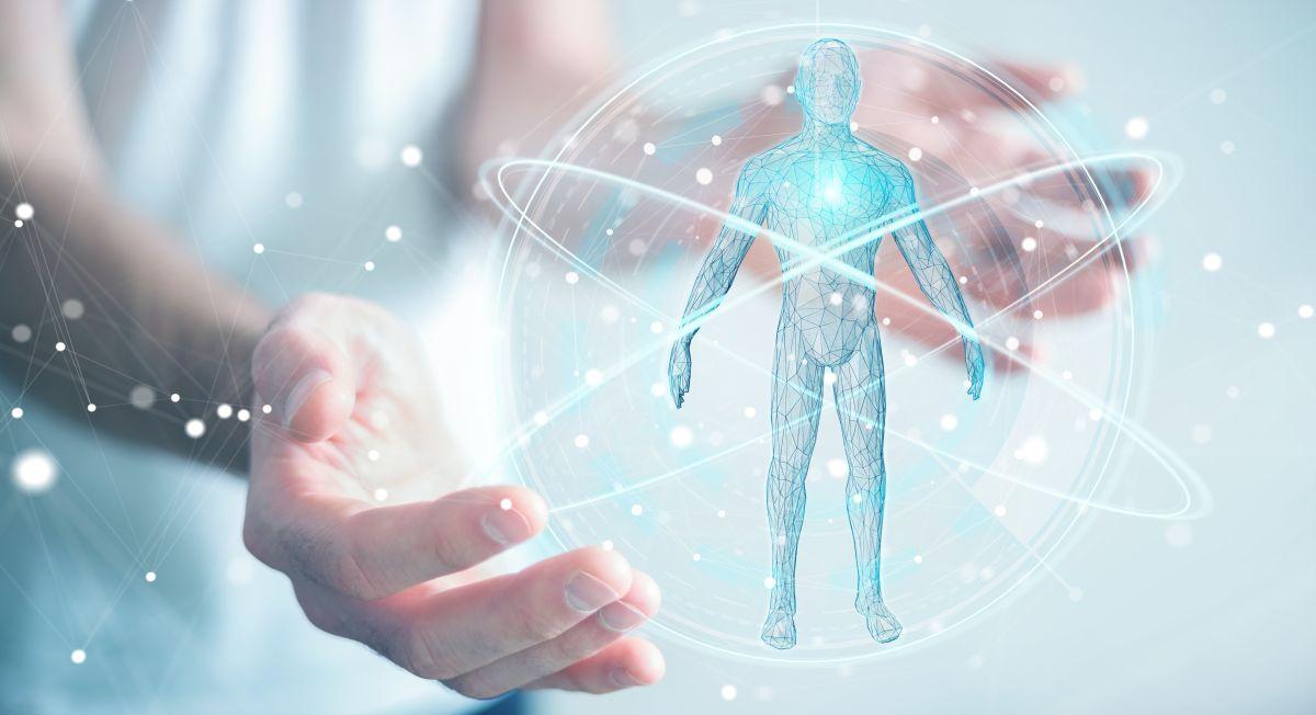 El glicocálix endotelial cubre internamente todas las arterias y venas del cuerpo. Desde las más grandes hasta los microcapilares (vasos sanguíneos) más diminutos.