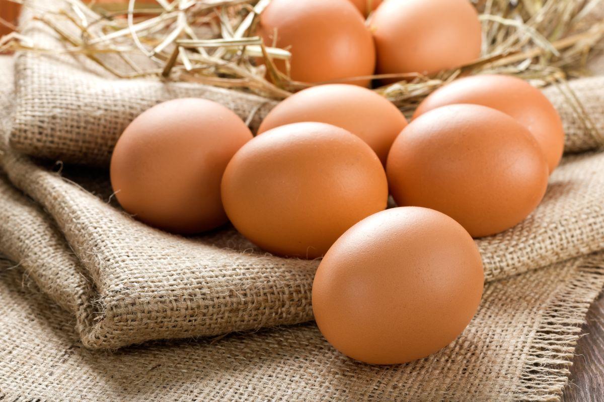 No es la primera vez que los científicos tratan de establecer la fórmula del huevo.