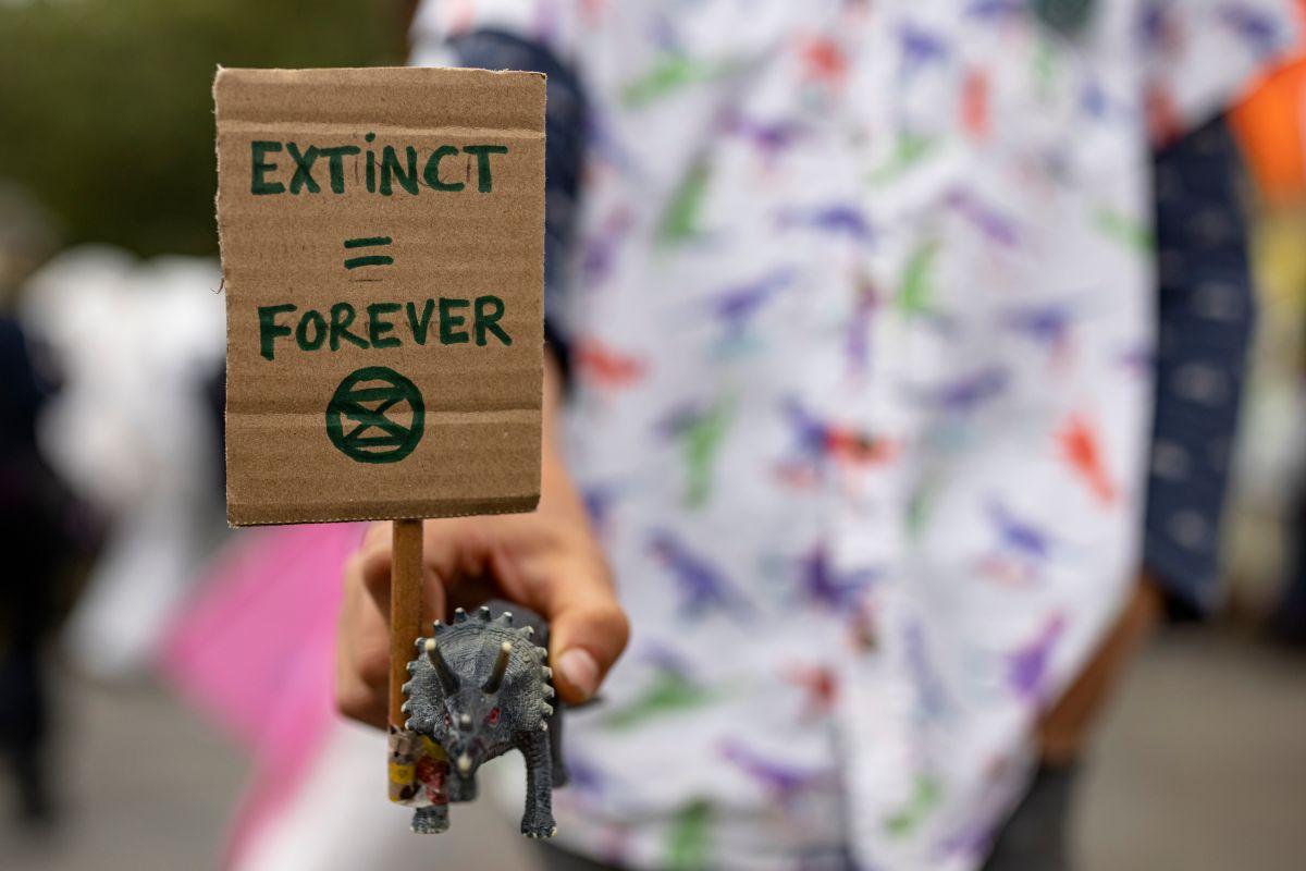 """""""No hay planeta B"""". Tres cuartas partes de los jóvenes consultados de entre 16 y 25 años piensan que el futuro es aterrador."""
